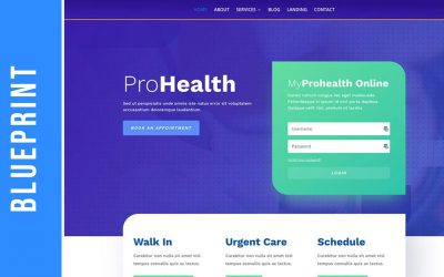 Pro Health Blueprint for Health Practitioners